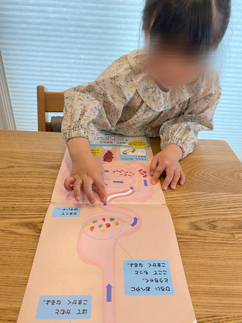 Z会幼児コース口コミ